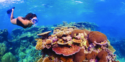 Barrier Reef Discovery from Brisbane Family, couples and ocean cruise holiday experience